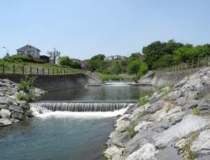 柳瀬川-2