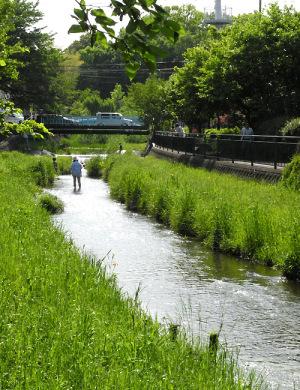 落合川-2