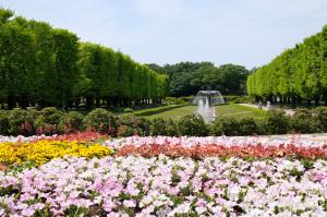 昭和記念公園-5