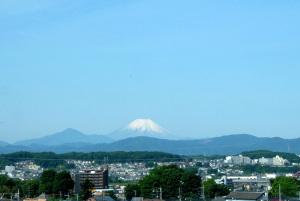 昭和記念公園-6